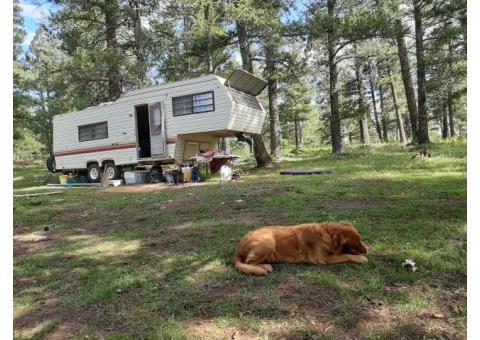 29ft gooseneck camper